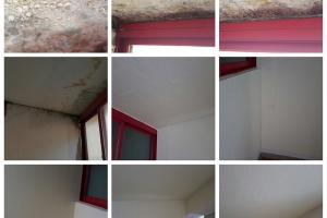 곰팡이제거 및 단열벽지 시공